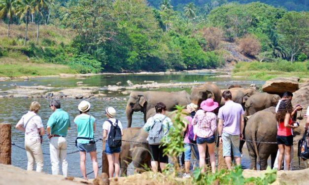 Conseils vestimentaires pour un voyage au Sri Lanka